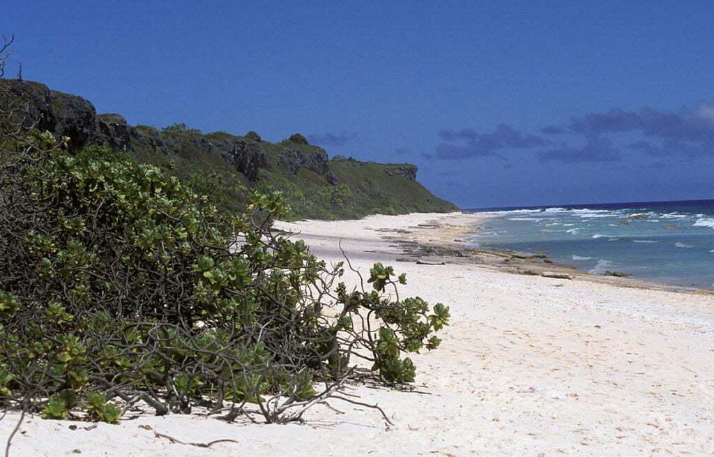 Wyspa Hendersona